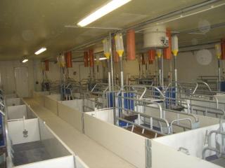 Karakai farm -5